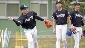 プロ野球春季キャンプ、期待の若手を徹底分析