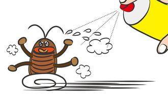 「ゴキブリが嫌う家」はココが徹底されていた