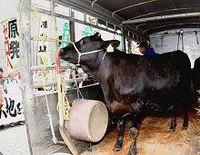 放射性物質が心配な牛肉 どのようにしてますか?--東洋経済1000人意識調査