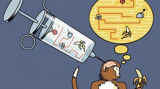 衝撃!サルの脳に「直接情報を注入」した結果