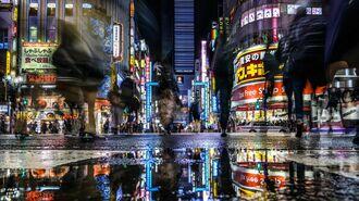 日本の「ゴジラ対策」危機管理的にどうだったのか