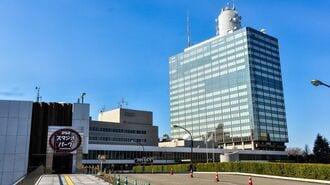 「N国党」新宿区議員の当選が取り消された理屈