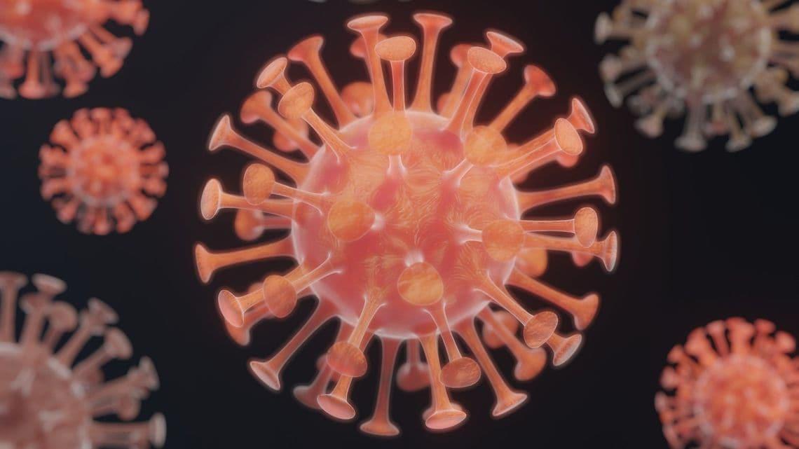 コロナ ネアンデルタール 人 ネアンデルタール人遺伝子が「ファクターX」!? WEDGE