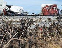 自民党政権ならば、震災や原発事故への対応は適切にできたか?--東洋経済1000人意識調査