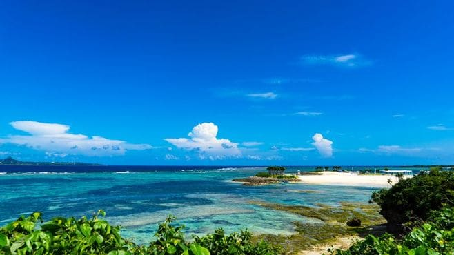 沖縄の彼女が波風立てても世に伝えたいこと